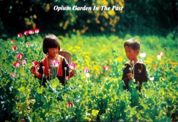"""Postcard of children in a field with the caption """"Opium Garden in the Past"""""""