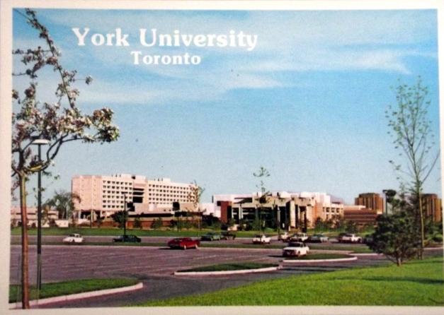 York University campus