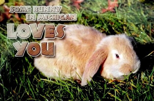 A bunny with the caption of Somebunny in Michigan loves you