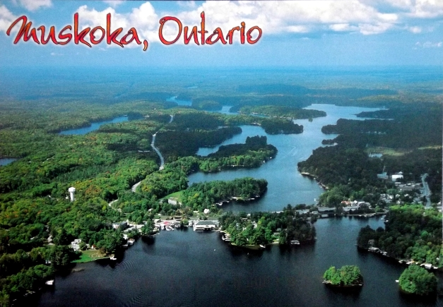 Aerial shot of Muskoka filled with lakes and green islands