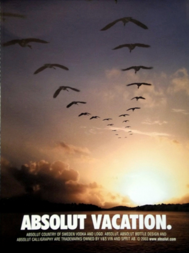 geese fly in the sky in the shape of the Absolut vodka bottle