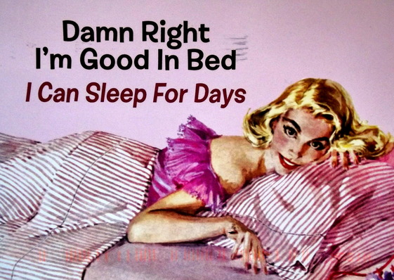 "Illustration of a woman lying in bed with the caption ""Damn right I'm good in bed - I can sleep for days"""
