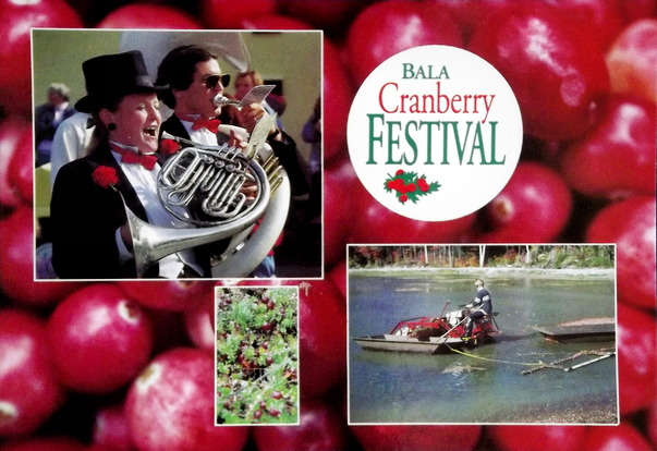 Pictures of cranberries with Bala Cranberry Festival events