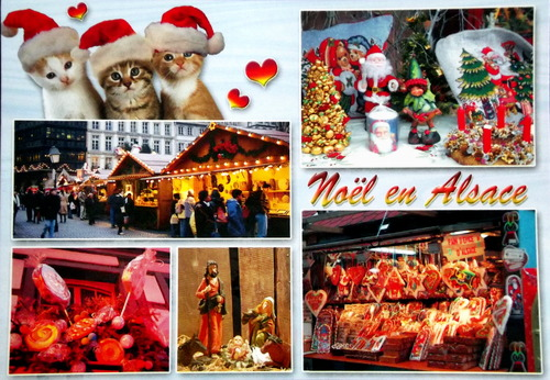 A collage of Alsatian scenes with cats surrounding them