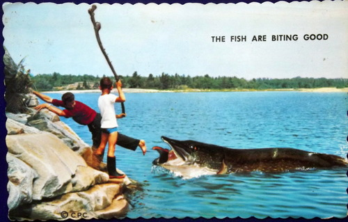 Old postcard of two boys fending off a giant fish