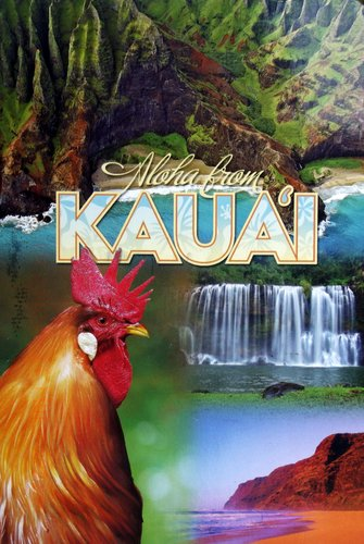 Images of Kauai - a rooster, waterfall,  and lush cliffs