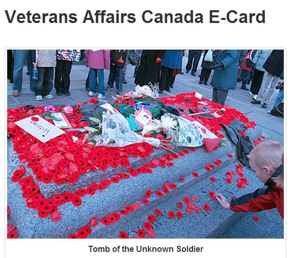 Tomb of Unknown Soldier Covered in Poppies