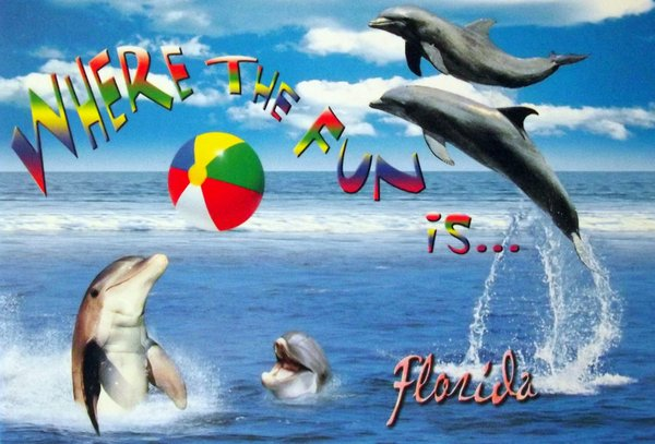 Dolphins are playing with a beach ball in the ocean