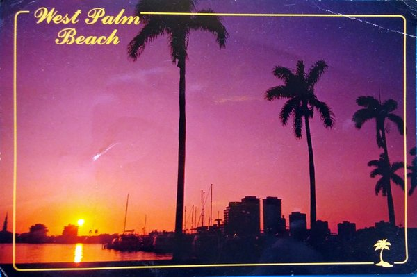 Silhouette scene of palm trees and the sunset